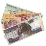 300 Egyptian Pounds